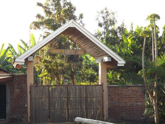 Ambureni Coffee Lodge: entrée