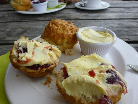 Trevaskis Farm: Cream tea, almost eaten!