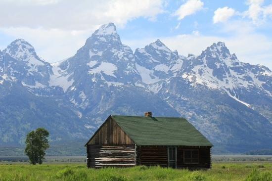Jackson Hole Wildlife Safaris - Day Tours: Grand Tetons