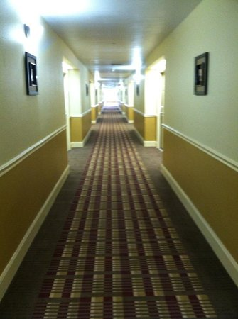 Motel 6 Bay City : Hallway of 2nd Floor very nice.