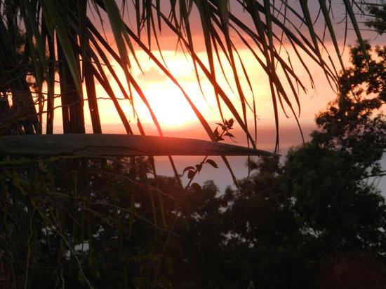Villa Rose Caraibes : Coucher de soleil de notre bungalow