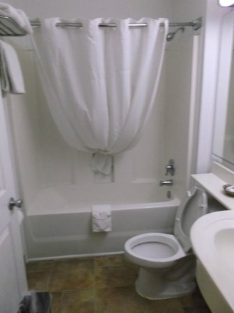 Microtel Inn & Suites by Wyndham Athens: the bathroom