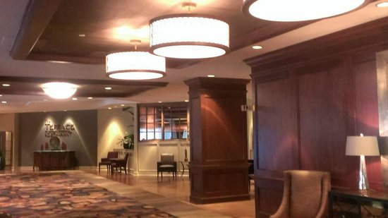 Peachtree City Hotel and Conference Center: Hotel Lobby