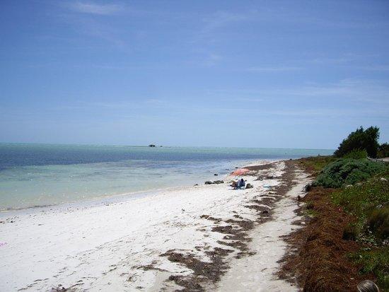 Bahia Honda State Park and Beach: La plage côté sud