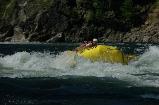 Interior Whitewater Expeditions - Day Tours: Coming up for air!