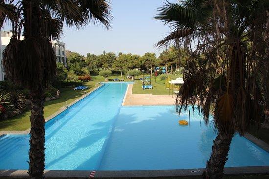 El Plantio Golf Resort: вид с окна