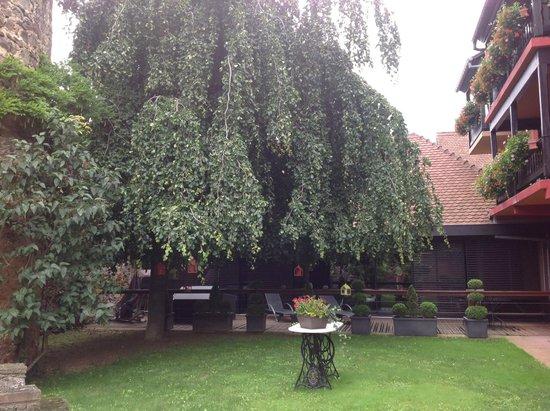Chambard : Jardin le long des terrasses de chambre. Espace SPA au fond