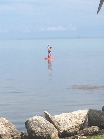 Seascape Motel and Marina: Paddle boarding at seascape hotel