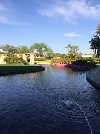 JW Marriott Phoenix Desert Ridge Resort & Spa: Water and Gardens