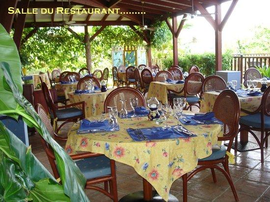 Le Rayon Vert : La très agréable salle à manger ouverte sur le jardin et la piscine...