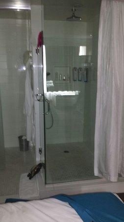 Hotel Le Bleu: Shower