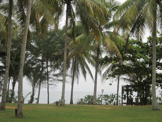 Tanjong Jara Resort: view from the room