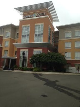 Cambria hotel & suites Raleigh-Durham Airport: It doesn't show the wooded area around the hotel
