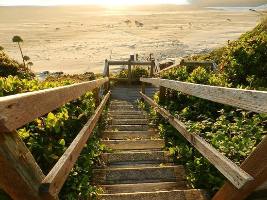 Moolack Shores Motel: Stairs from Moolack to beach