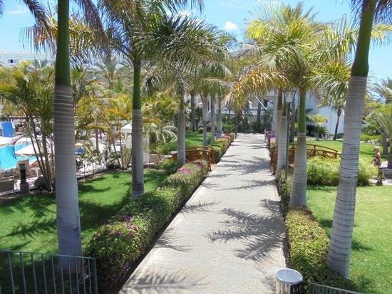 Hotel Riu Palace Maspalomas : Jardins