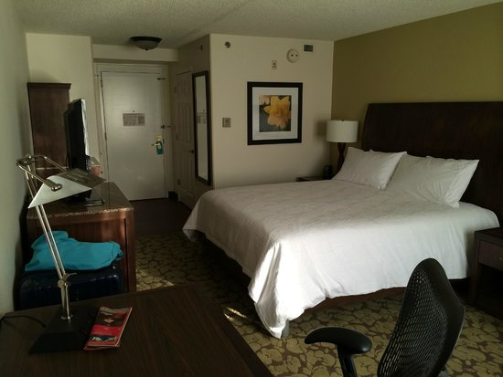 Hilton Garden Inn Tampa East/Brandon: Room