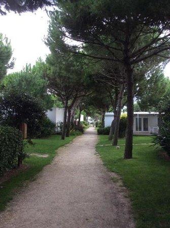 Jesolo Camping Village - Villaggio Turistico Adriatico: Viale interno