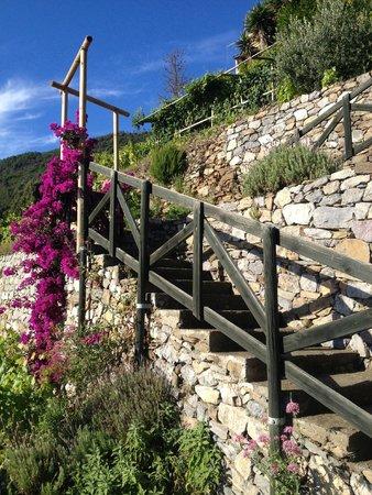 Il Borgo di Campi: percorso a piedi per risalire all'ingresso della struttura
