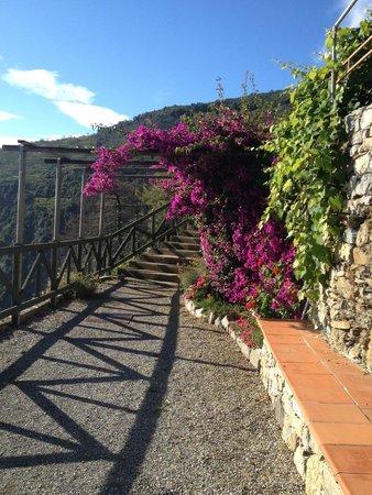 Il Borgo di Campi : percorso a piedi per risalire all'ingresso della struttura