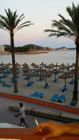 Tora Hotel: Beach