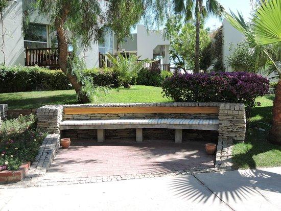 Club Med Bodrum Palmiye : Vue parc