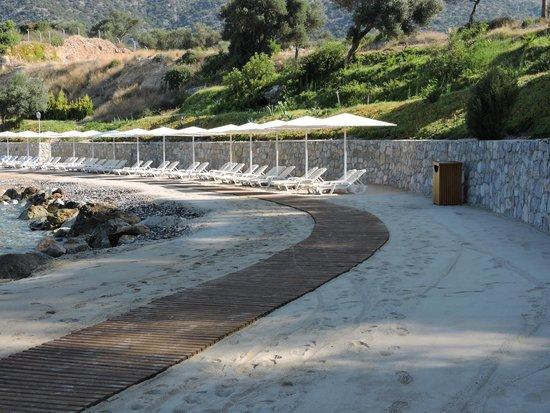 Club Med Bodrum Palmiye : Vue plage