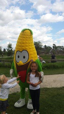 York Maze: Mr corn
