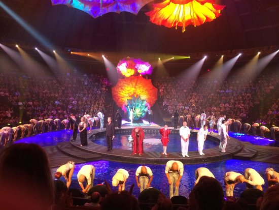 Le Reve - The Dream : Bravo!  Awesome Performance