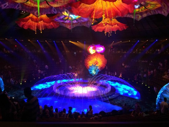 Le Reve - The Dream : Nice lighting and there's no bad seats since the stage is in the middle
