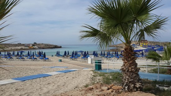 Anonymous Beach Hotel: Пляж
