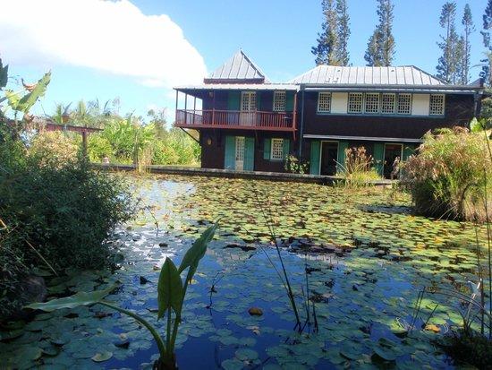 Conservatoire Botanique National : Mascarin