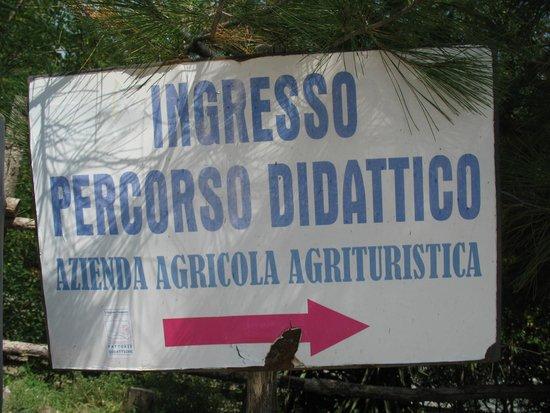 Salotti Allaperto : Salotti allaperto picture of scuderia monte somma somma