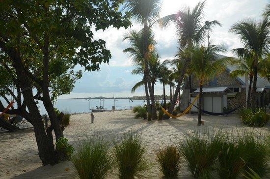 Ibis Bay Beach Resort : Beach front rooms