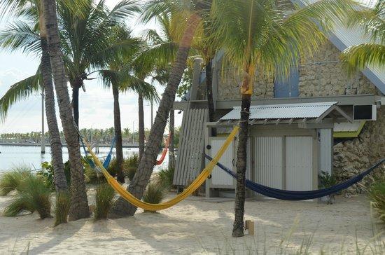 Ibis Bay Beach Resort: Beach front rooms