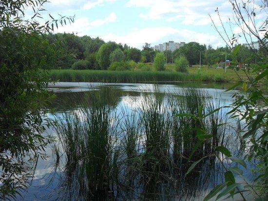 Voronezh Lakes Park