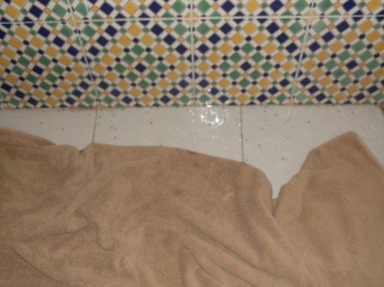 El Mouradi Djerba Menzel: fourmilieres