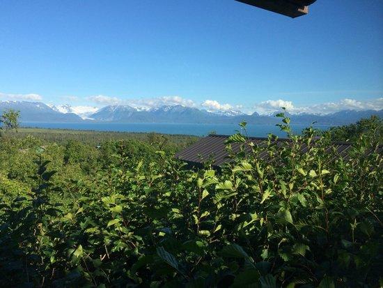 A Stellar View: View across Kamechak Bay