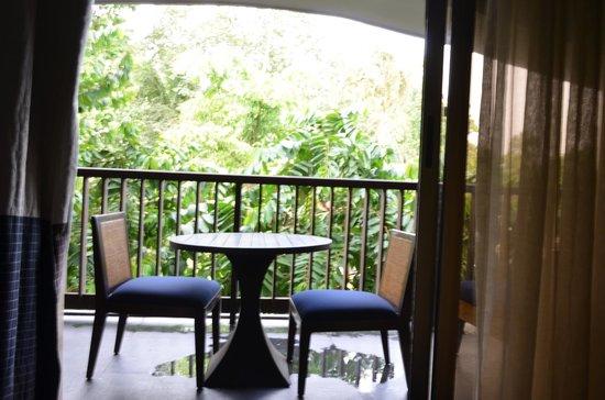 Alila Diwa Goa: View