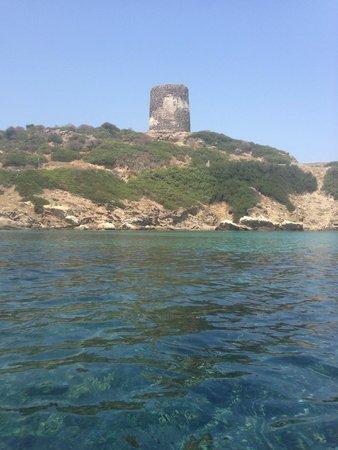 Parco Nazionale Asinara: Cala d'Arena 2