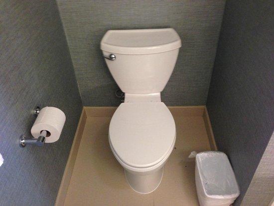 Residence Inn Tustin Orange County: Toilet