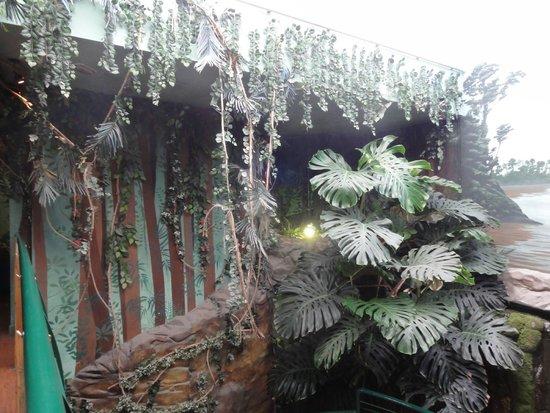 Oceanarium: Photo 5