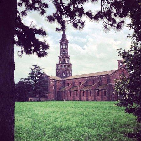 Abbazia di Chiaravalle: La ciribicciacola