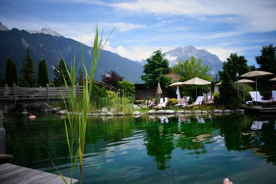 Alpenresort Schwarz : Naturteich
