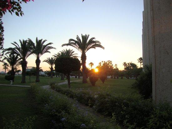 Iberostar Diar El Andalous : The grounds at dawn