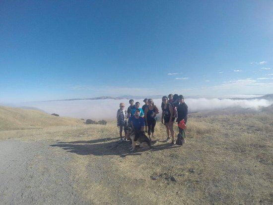 Mission Peak Regional Preserve : Almost to the top