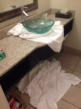 Holiday Inn - Hamilton Place: Our leaky sink