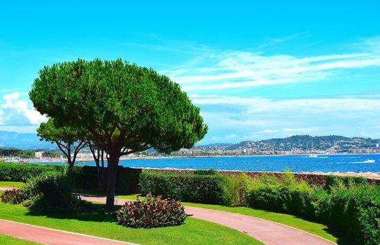 Pullman Cannes Mandelieu Royal Casino: Территория отеля