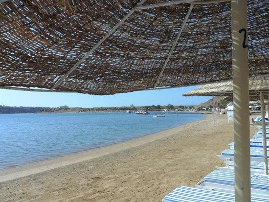 Turquoise Beach Hotel: Пляж отеля.