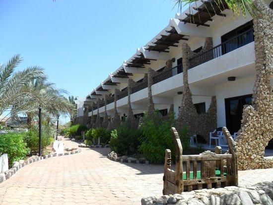 Turquoise Beach Hotel: Корпус отеля.