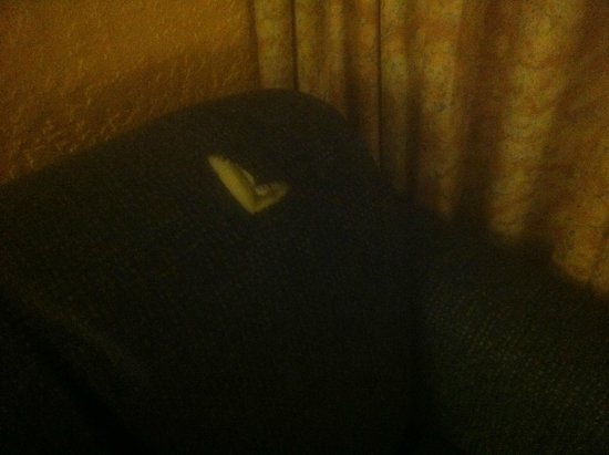 Arizona Riverpark Inn: Tear in seating, sofa looked stained/dirty